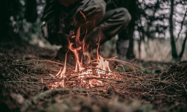 How To Start a Fire by Rubbing Two Sticks Together